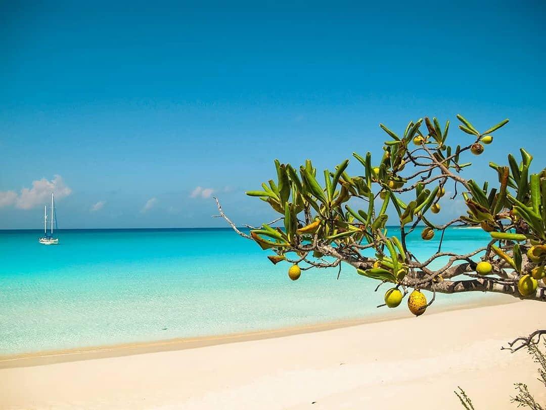vurku.com-bahamas-CEHwrdshK1G